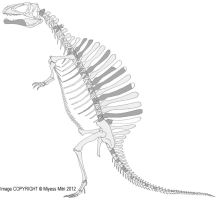 Spinosaurus Old Pose by Miyess