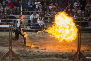 Fire Whip by AccessAccess