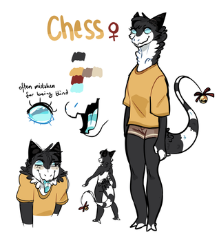 CHESS Quick ref by pollovy