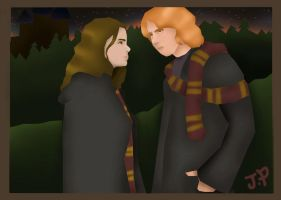 Ron and Hermione by Johanna007
