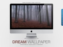 Dream Wallpaper by MrFolder