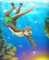 Diving trip by Dragendorf