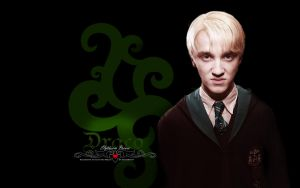 HP series: Draco wallpaper by Elfa-dei-boschi