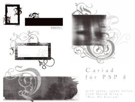 Cariad for PSP 8 by ashadevirasa