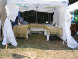 Joan's Store Tent 1 by steward