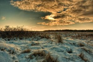 Winter meadow HDR test by Oddersnude