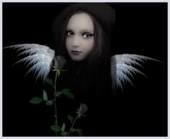 Dark Angel by Lauraest