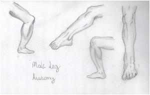Male Leg Practice by lawlaw06