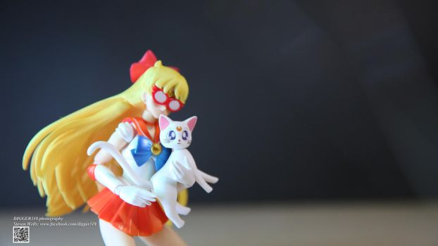 S.H. Figuarts Sailor Venus by Digger318