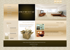 CIS Uruguay website prototype. by Youness-toulouse