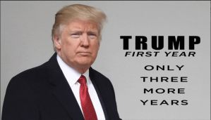 One Year of Trump by JMK-Prime
