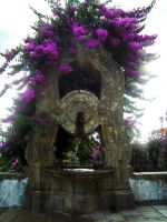 The Fountain by Sonia-Rebelo