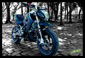 Kawasaki KSR take 1 by LouieHitman