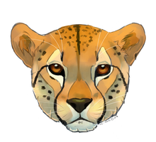 You've Got A Cheetin' Face by TheVerdantHare
