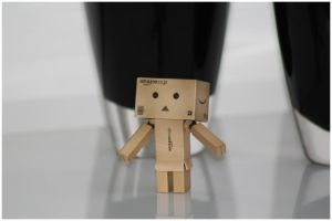Danbo unwilling by streamweb