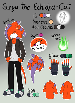 .:Ref:. Surya the Echidna-Cat by Fire-For-Battle