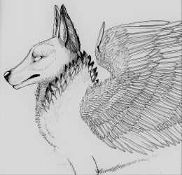 Winged wolf line art by icedragon78970