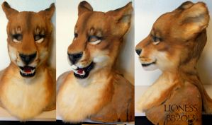 Lioness Head by Magpieb0nes