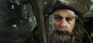 Radagast The Brown by Ondjage