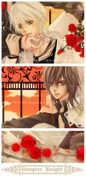 Vampire Knight : Night 010 by mrsloth