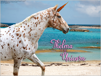 Thelma the Unicorn by magsislove