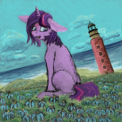 Summer of Flowers YEAR 2 (almost) v2 by kingsleyrulz