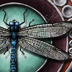Dragonfly Totem by kaerless