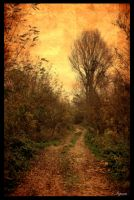 Road... by Ler-ac