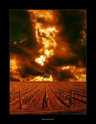 End of World by olino