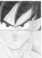 Son-Goku by Son-Ruffy