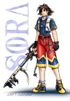Sora- Four Years Later by nachtwulf