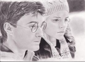 Harry and Hermione by withmyowneyes