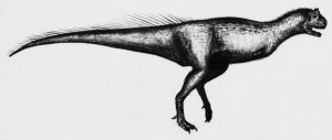 another Carnotaurus by theropod1