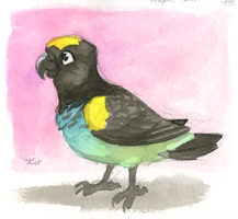 Inktober #26 - Meyer's Parrot by OnyxSerpent