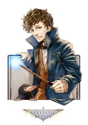 Fantastic Beasts_Newt Scamander by sho000