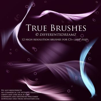 True Brushes by differentxdreamz