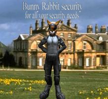 security ad. by timberfox15