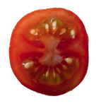 Tomato PNG by Bunny-with-Camera