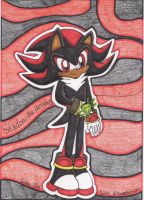 .: Shadow and his Chaos Emerald~ :. by Serene-Snowflakes