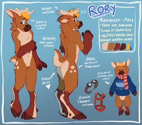 Rory Reference Sheet by Tsebresos