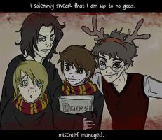 The Marauders' Pic by rokklagio