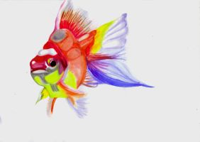 Watercolour fish, Take two XD by Tammyyy