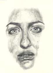 Face Drawing with pencil by rhyshaug