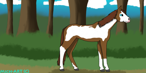 American paint horse by Michywolfranch