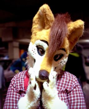 Refer fursuit by pinali
