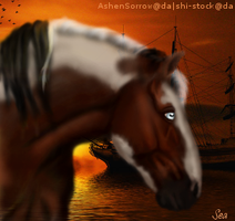 Apache finished horse avi(HEE) by SeaHeartStables