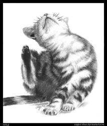 Drawing Practice #13 ~ Itchy! (Kitten) by nagini-chan