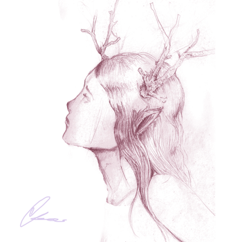 A little deer sketch by carr0w