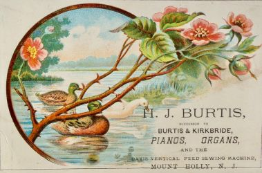 Victorian Advertising - Summer Serenity by Yesterdays-Paper