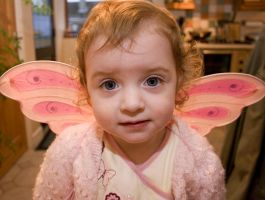 Fairy for a day. by kango